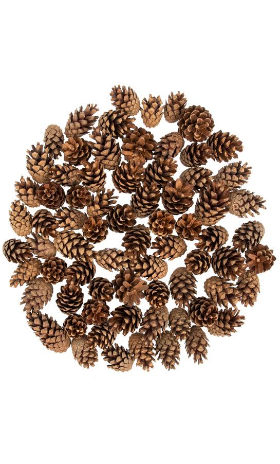 Decorazioni Natalizie Pigne.Pigne Naturali Fairycones 72 Pz Decorazioni Natalizie Fairytrees